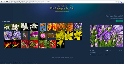flower-gallery