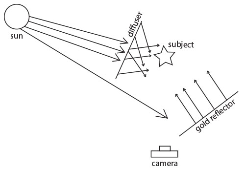 diffuser/gold reflector diagram