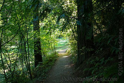 hoyt arboretum - path