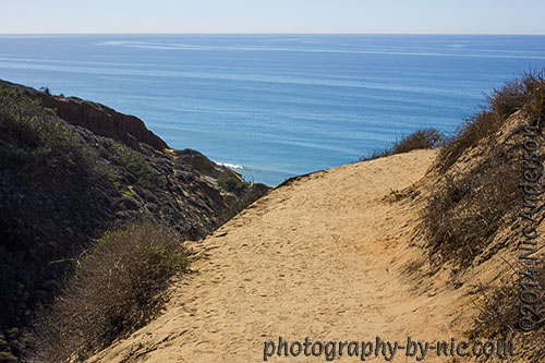 torrey pines state reserve - guy fleming trail