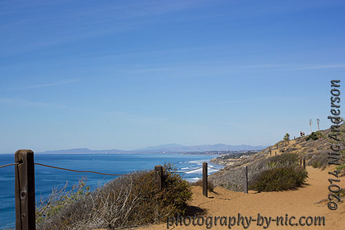 torrey pines state reserve - oceanview