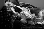 Scarlett black&white