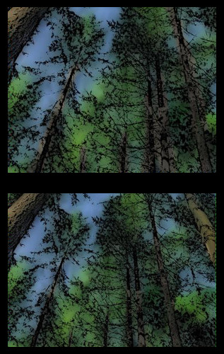 tree-trunks-diptych