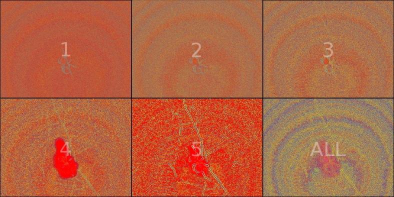 wavelet-polyptych-hue