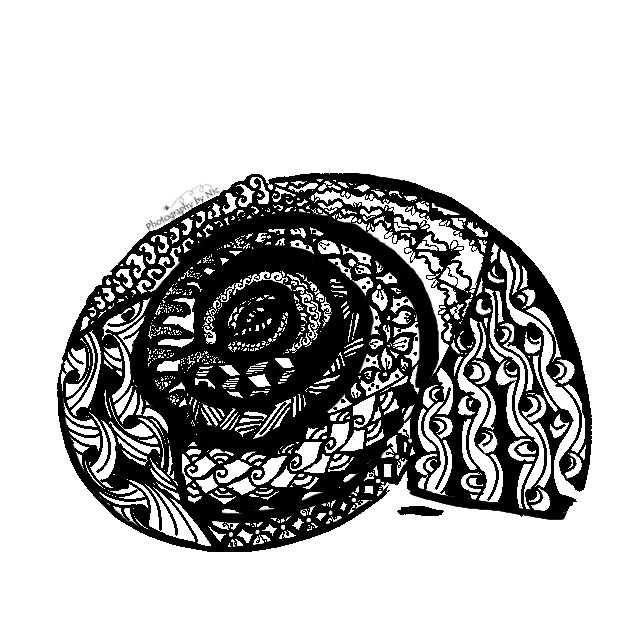 snail-zentangle-sq-wm