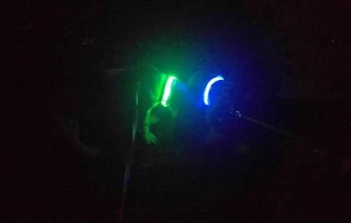 Night walks (with Illumiseen Collars - Duke-blue, Penny-green) June 15