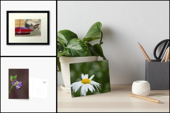 flowers-montage